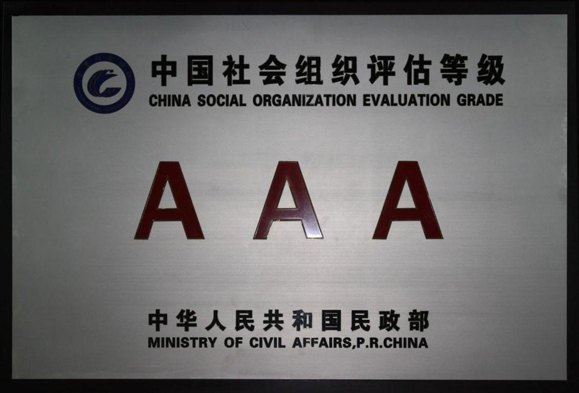 中国社会组织评估等级.jpg